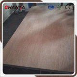 Furniture/ Packing Grade 9/12/18mm Bintangor Plywood with Ce