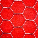 Chicken Wire / Hexagonal Wire Mesh