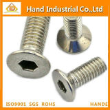 Specializing Production Hex Socket Csk Head Screw