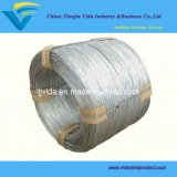 Hot Dipped Galvanized Wire/G. I Wire