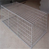 Galvanized Welded Gabion Box/Gabion Mesh