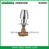 Brass Globe Valve with Plastic Handle (AV4006)
