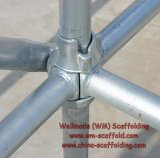 Cuplock Steel Scaffold