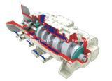 Lgb Series Variable Pitch Screw Dry Vacuum Pump (LGB-30DV)