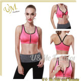 Four Colors Gym Ladies Sports Bra Tops Fitness Yoga Wear