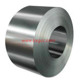 Stainless Steel Coils Price (304 316 321 310S)