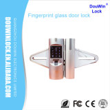 Douwin Brand Commercial Glass Door Lock