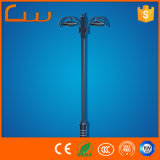 Outdoor 110V Double Arm 5m High LED Garden Light Price