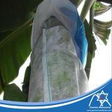 PP Spunbond Nonwoven Fabric for Banana Bag