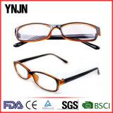 Ynjn Own Design High Quality Wholesale Eyewear Frame (YJ-27874)