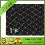 High Quality Bird Nets Exporting Control Birdsagricultural Netting