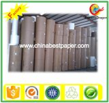 Roll Copy Paper (DIA 1200mm)