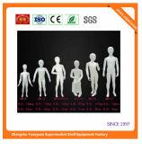 Kid Children Torso Mannequins 072822