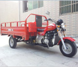 150cc Gasoline Open Motorized Cargo China 3 Wheel Motorcycle (SY150ZH-A3)