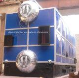Energy Saving 6 T/H Bi-Drum Solid Fuel Fired Steam Boiler