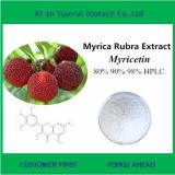 Natural Myricetin 99% From Bayberry Bark Extract