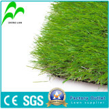Natural Looking Plastic Artificial Fake Grass for Soccer Field