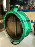 Dn800 Ss304 Disc Double Flange Butterfly Valve with Gear Box