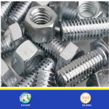 China Supplier of High Strength Steel Bolt