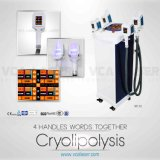Body Slimming Weight Loss Cryolipolysis Freezing Equipment