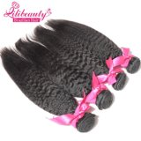 Wholesale Kinky Straight Brazilian Virgin Hair Weft