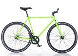 Customized Hi-Ten Steel Single Speed Fix Gear Bike