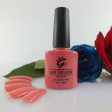 Pretty Factory Direct Sale Gel Polish for Nail Salon