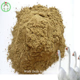 72% Protein Fishmeal Animal Feed Hot Sale