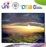 High Definition Protect Panel 42 Inch LED TV