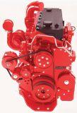 Top Quanlity Cummins Engine From China (Cummins M11, NT/NTA-855, KT/KTA/KTTA19, KT/KTA38, KTA/KTTA50, 4BT, 6BT, C serials engine)