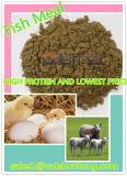 High Quality&Fish Meal with High Protein for Animal Feed