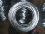 Stainless Steel Wire Coil Ss304