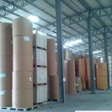 Woodfree Offset Paper with Lowest Price
