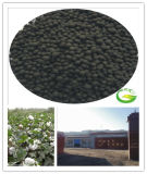 Granular Orgnaic Fertilizer Soil Conditioner Humic Aacid Humate