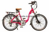 "26""E-Bike / Cheap Electric Bike /Eco-Friendly City E-Bike (SY-E2637)"