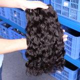 Natural Wave Brazilian Virgin Human Water Wave Hair Bulk