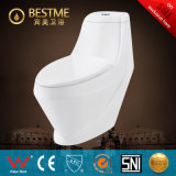 Hot Sales Washdown One Piece Water Closet (BC-1009A)