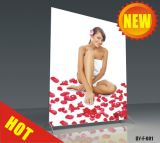 Custom Aluminum Frame Banner Free Stand (DY-F-001)