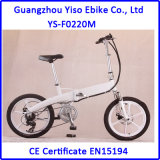 20 Inch Folding E Bike with Magnesium Alloy Wheel