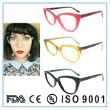 Cat Eye Eyewear Optical Frame and Optical Glasses with High Quality