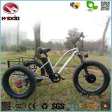 Wholesale 500W Fat Tire Electric Beach Tricycle with Pedal