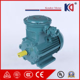 Single Phase 380V Explosion-Proof AC Motor with CE