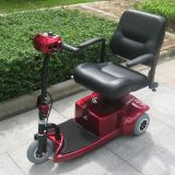 CE Approval 3 Wheels Electric Scooter for Handicapped (DL24250-1)