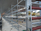 Chicken Farm Cleaning System Manure Cleaning