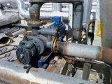 Bitument Twin Screw Pump