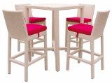 Garden Outdoor Wicker Bar Chair and Table
