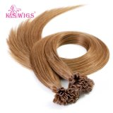 Natural V-Tip Russian Keratin Human Hair Extensions