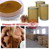 China Source Factory Sale Ginseng Root Extract