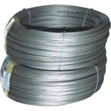 Q195/Q235/SAE1006/SAE1008 Prime Hot Rolled Steel Wire Rod in Coil