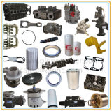 Machine Engine Spare Parts with Big Stock and Best Price